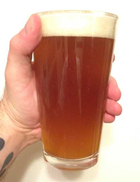 Shady Brewing's Great Big Bushy Beer IPA