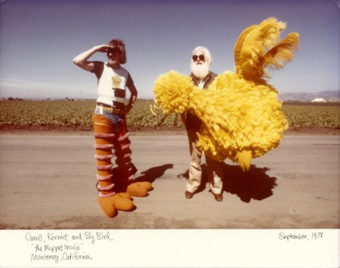 """I Am Big Bird"""
