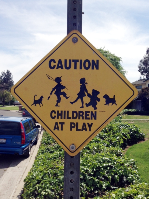 CAUTION: CHILDREN (and others) AT PLAY!