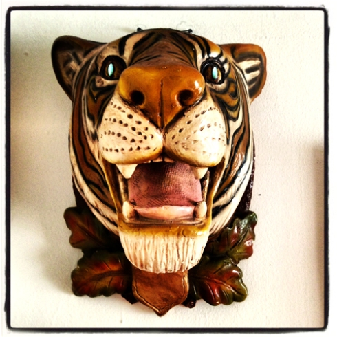 THE TIGER HEAD IS HUNG!