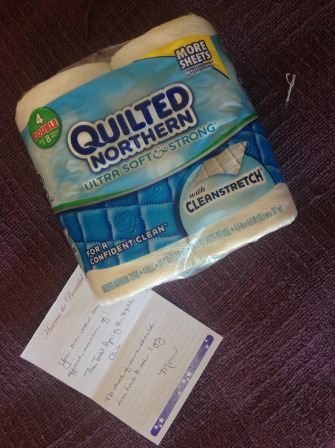 Toilet Paper of the Month: Quilted Northern Ultra Soft & Strong (with Cleanstretch)!