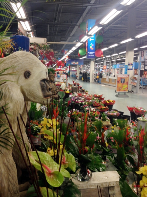 Only in the Netherlands can you buy a life-size gorilla statue in a grocery store.