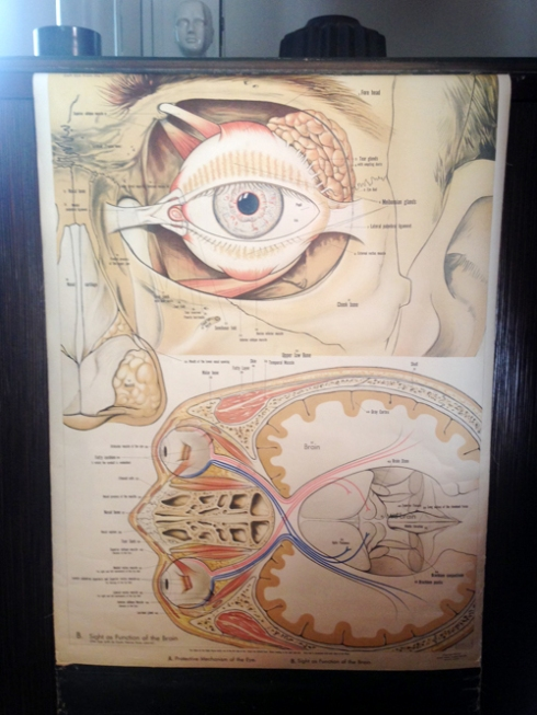Creepy medical eye charts!