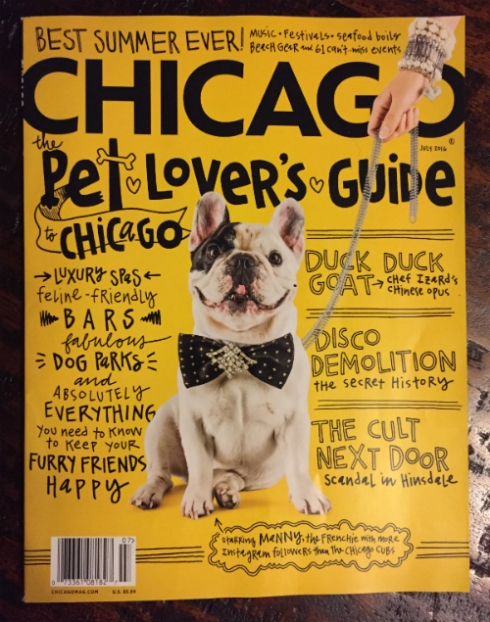 """Chicago"" magazine's July issue features Dwellephant hand lettering..."