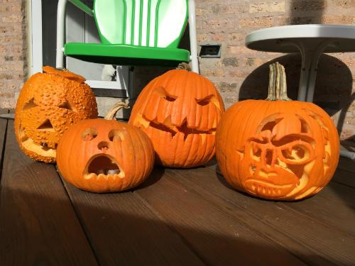 2016 pumpkins!
