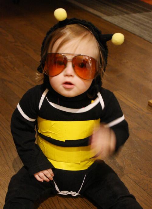 Grey Bee-lushi!