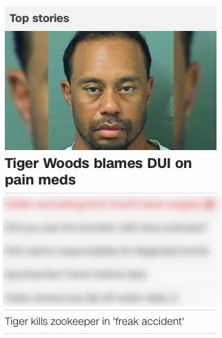 Bad, Tiger. BAD TIGER!